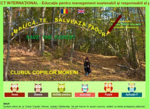 3. save the forests project