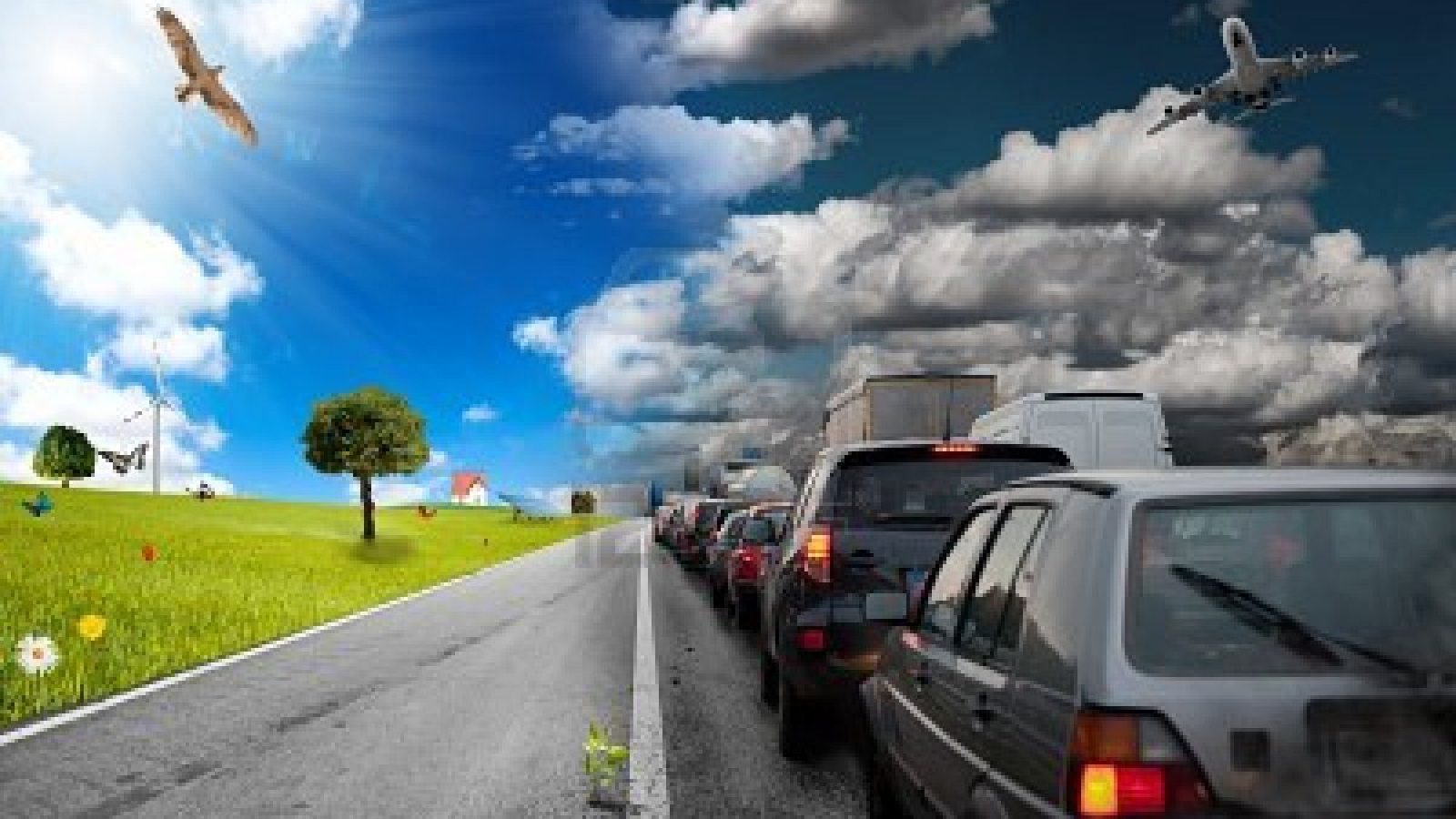 10106510-diffference-between-car-pollution-and-green-environment